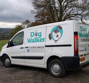 Dog Walker, Consett